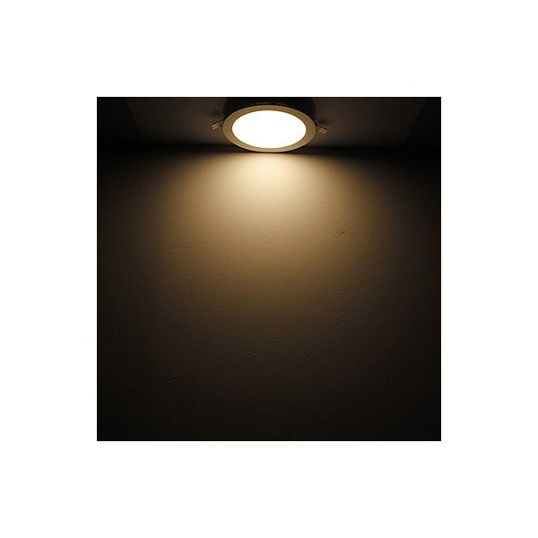 RUICAIKUN 12W 880Lm 2800-3000K Soft White LED Panel Light Round